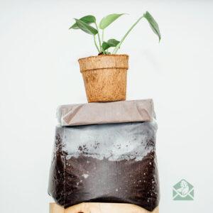 Kokos stek- en zaaigrond - cocopeat blokjes - potgrond